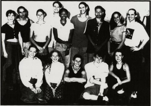 darc swan 1990s
