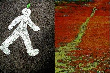leaf man & path